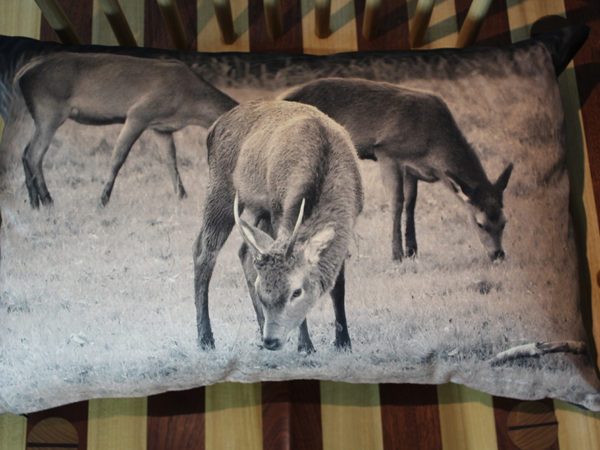 Luxury handmade Irish tweed backed landscape cushion -Red deer Killarney